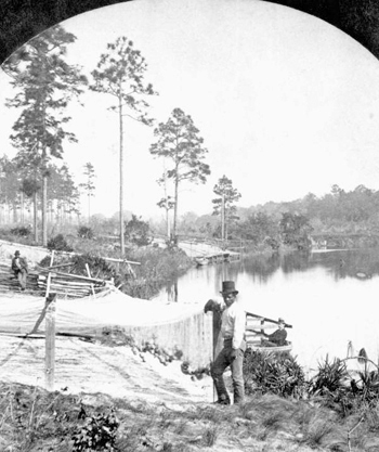 Fisherman's seines on the St. Johns River (187-)