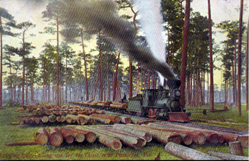 Logging train pulling out for the coast: near Pensacola, Florida (19--)