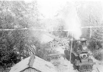 Pensacola and Andalusia Railroad Company train unloading logs into Escambia River (189-)