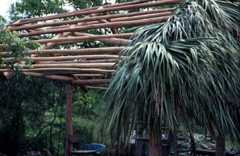 Partially built chickee: Big Cypress Seminole Indian Reservation, Florida (not after 1980)