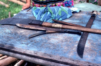 Mary B. Billie's tools for gathering palmetto fibers to make Seminole dolls: Big Cypress Seminole Indian Reservation, Florida (not after 1980)