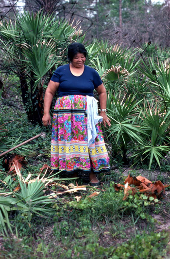 Mary B. Billie admiring the palmetto fibers she has collected for dollmaking: Big Cypress Seminole Indian Reservation, Florida (not after 1980)