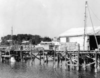 The Cedar Key Fish House and Fishbonz Then