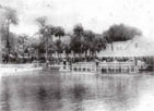 View across the spring : Silver Springs, Florida