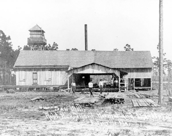 Sawmill of the Robert Hungerford Normal and Industrial School (19--)