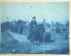 Example of cyanotype
