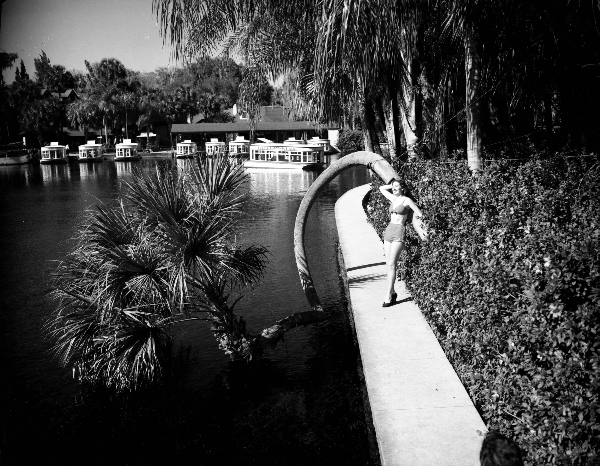 Model posing by the lucky horseshoe palm tree at Silver Springs.