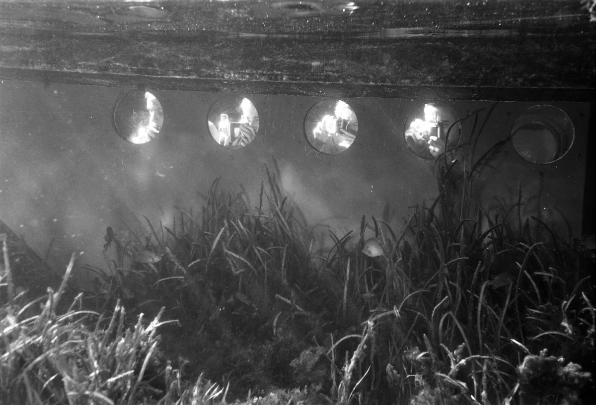 Tourists using the photo-sub portholes to take underwater pictures at Silver Springs.