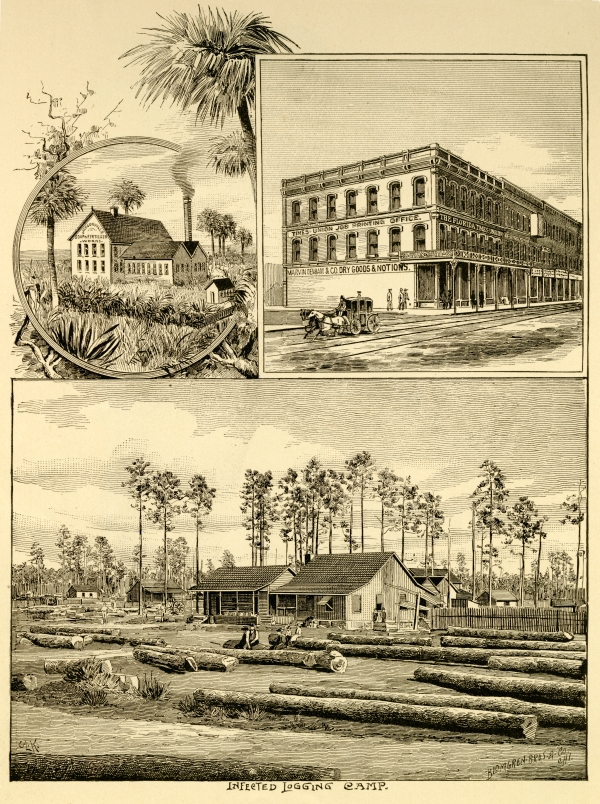 Soap factory, Times Union building and infected logging camp in Jacksonville.