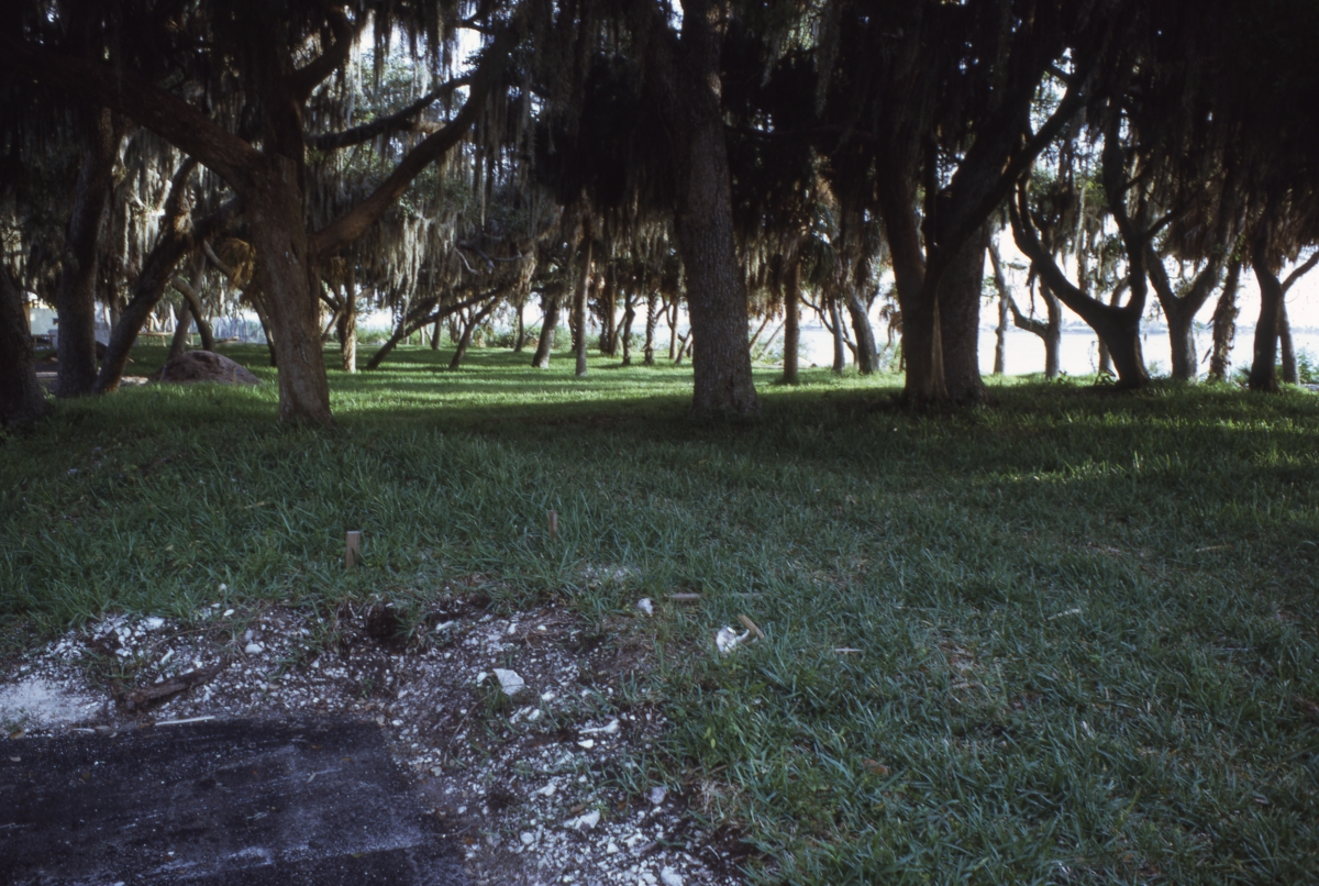 Photographs of the Bay Pines Site.