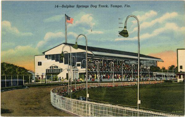 Sulphur Springs Dog Track, Tampa, Fla.