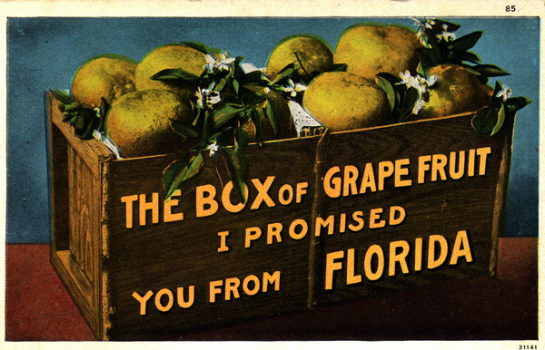 The Box of grapefruit I promised you from Florida