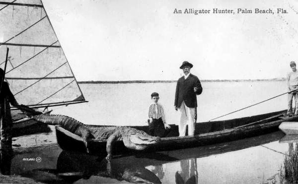 Alligator hunter posing with a large dead alligator and a young boy.