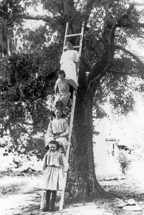 Girls on a ladder - Tallahassee, Florida.