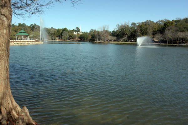 Lake Ella in Tallahassee, Florida.