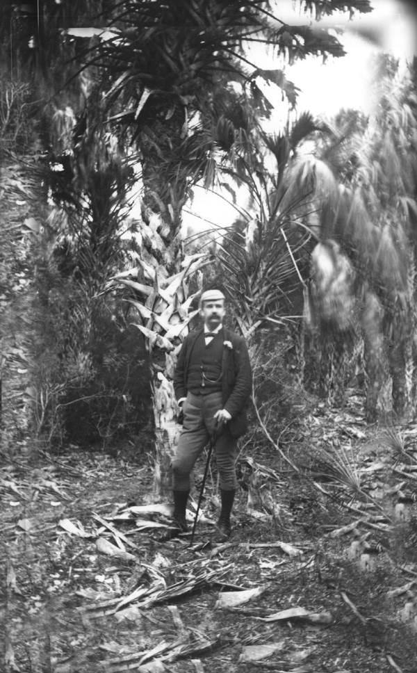John Hamilton Gillespie poses under a large palmetto - Sarasota, Florida.