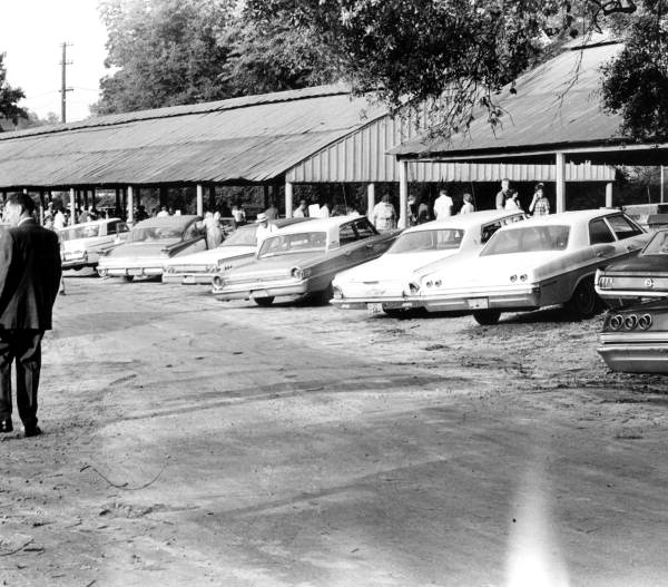 Automobiles parked at the curb side market - Tallahassee, Florida.