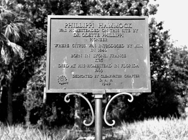 Odette sic Phillipi sic dedication